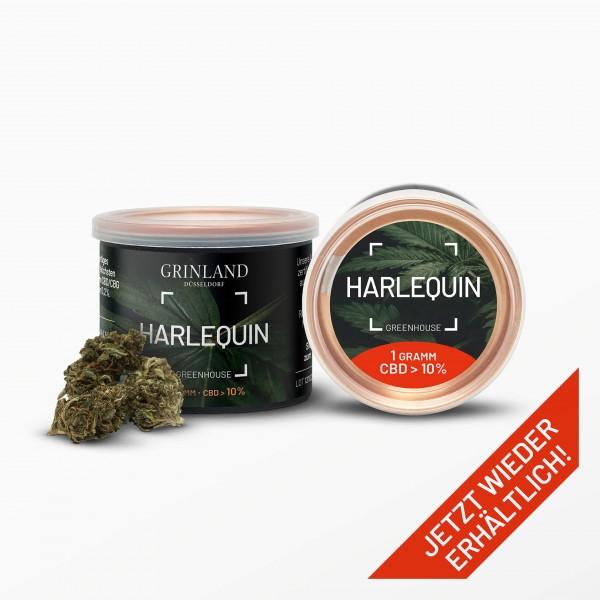 HARLEQUIN Greenhouse - CBD > 10% - Aromablüten
