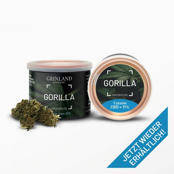 GORILLA Greenhouse - CBD > 11% - Aromablüten