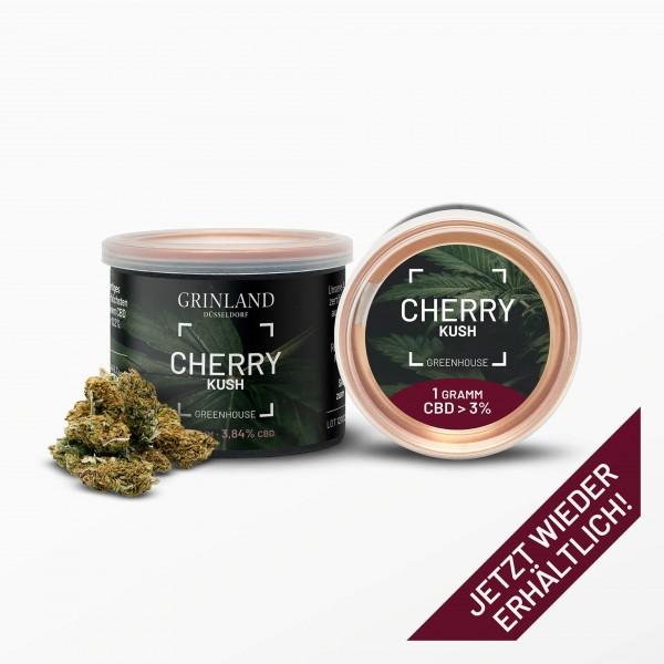 CHERRY KUSH Greenhouse - CBD > 3% - Aromablüten